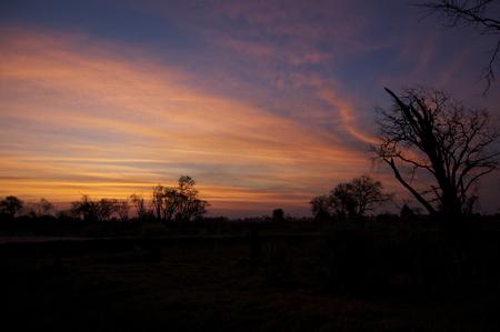 Okavango Delta: Cloudy Orange Stock Photo