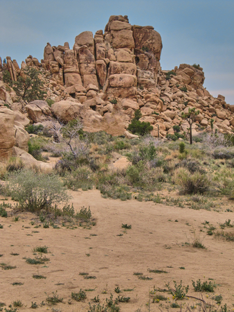 Rock formations of Joshua Tree National Park - California Stock Photo