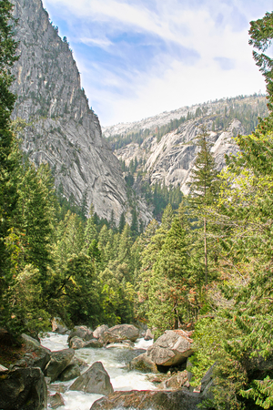 A wild stream in Yosemite National Park