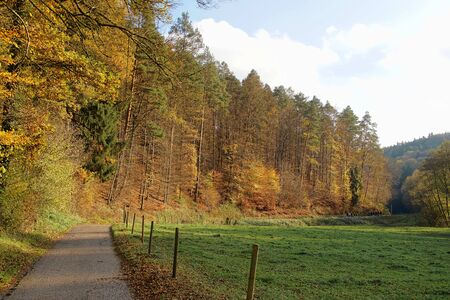 Autumn landscape with a path beside a meadow Stok Fotoğraf - 135054528