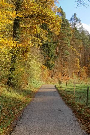 Autumn landscape with a path beside a meadow