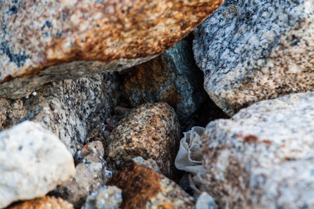 Rock texture in close up for background Stock Photo
