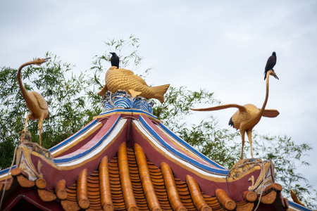 Real bird on top of Chinese Temple roof 写真素材