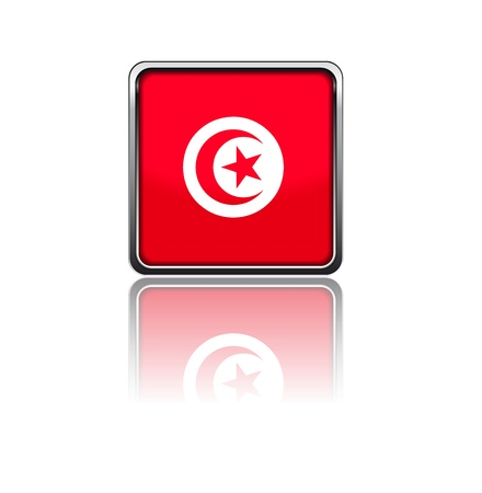 National flag of Tunisia Stock Vector - 20050643