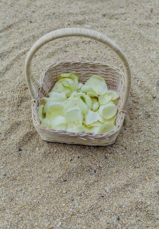 Wedding on the beach   photo