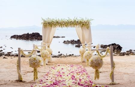 wedding chairs: Wedding on the beach