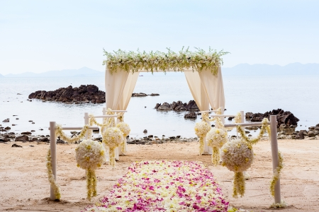 Wedding on the beach   photo