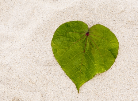 Leaf in shape of the heart on the beach  photo