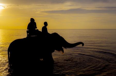 Silhouette couple on the beach. photo