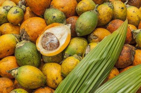 betelnut: Betel nut put on the ground for drying. (Areca catechu) Stock Photo