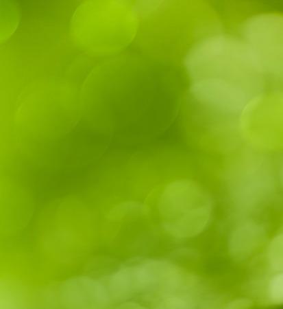 banana leaf: Beautiful bokeh  background - Water drops on the green banana leaf