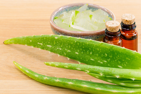 heal care: Aloevera - Natural Spas Ingredients for skin care. Stock Photo