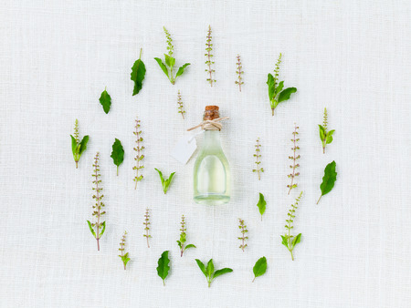 essential: Bottle of essential oil, with holy basil leaf and flower.
