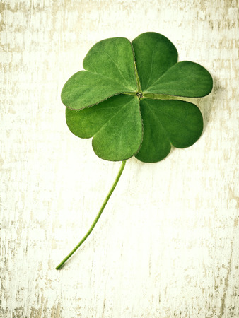luckiness: Closeup clover leaf on wooden heart  background.