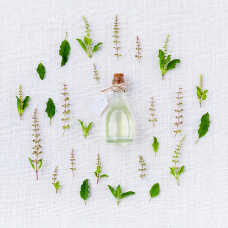Bottle of essential oil, with holy basil leaf and flower.
