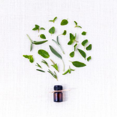 Flasche ätherisches Öl mit Kräuter heilige Basilikum, Rosmarin, Oregano, Salbei, Basilikum und Minze auf weißem Hintergrund. Standard-Bild - 40107585