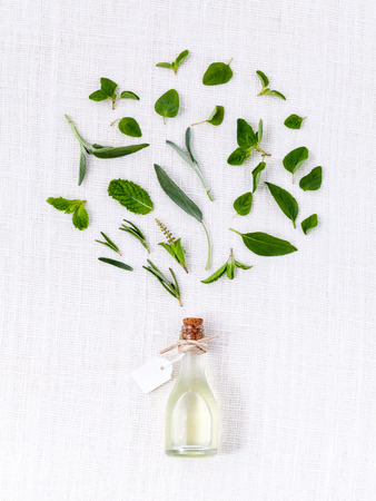 mint leaves: Bottle of essential oil with herb holy basil leaf, rosemary,oregano, sage,basil and mint on white background.