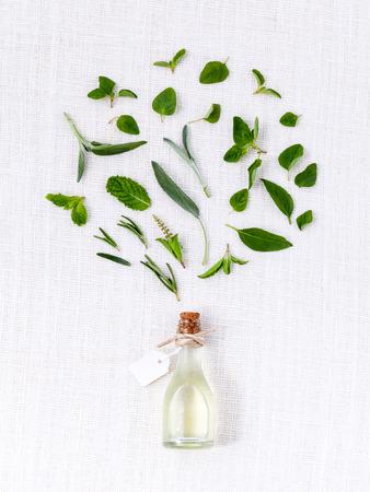 Flesje etherische olie met kruid heilige basilicum blad, rozemarijn, oregano, salie, basilicum en munt op een witte achtergrond.