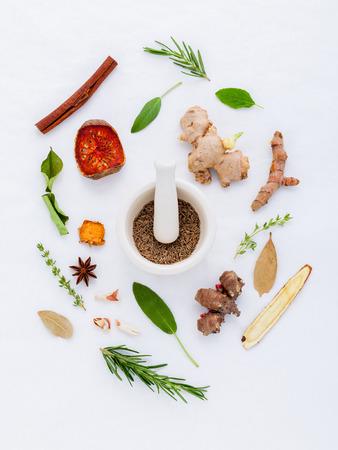Alternative Heilkräuter für Kräutermedizin für gesundes Rezept frisch und trocken Kräuter mit Mörtel auf weißem Hintergrund. Lizenzfreie Bilder