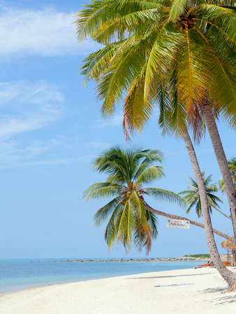 koh samui: Landmark of Baan Tai beach Koh Samui island,Thailand Stock Photo
