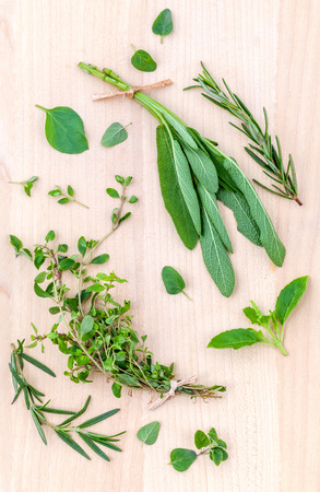 green herbs: Fresh green herbs harvest from garden on wooden rustic background . Stock Photo