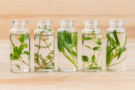 Bottle of essential oil lemon thyme ,thyme ,oregano,rosemary and sage leaf on wooden background. Stock Photo