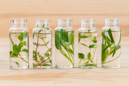 Bottle of essential oil lemon thyme ,thyme ,oregano,rosemary and sage leaf on wooden background. Standard-Bild