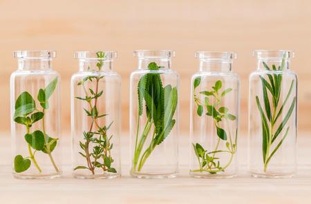 Fles essentiële olie citroen tijm, tijm, oregano, rozemarijn en salie blad op houten achtergrond. Stockfoto