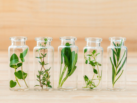 Bottle of herbs lemon thyme ,thyme ,oregano,rosemary andsage leaf on wooden background.