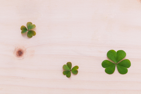 ornamental background: Closeup clovers leaves  setup on wooden background.