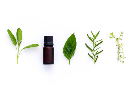Bottle of essential oil with herb holy basil leaf, rosemary,oregano, sage,basil and mint on white background. Фото со стока - 46977583