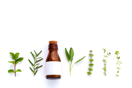 plant medicine: Bottle of essential oil with herb holy basil leaf, rosemary,oregano, sage,basil and mint on white background.