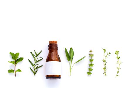 Flasche ätherisches Öl mit Kräuter heilige Basilikum, Rosmarin, Oregano, Salbei, Basilikum und Minze auf weißem Hintergrund.