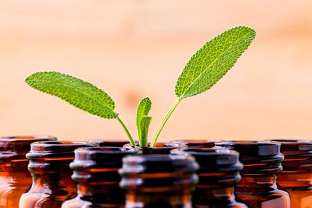 Natural Spa Ingredients salie essentiële olie voor aromatherapie met salie blad op houten achtergrond.