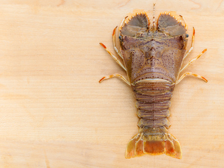 lobster tail: Raw Flathead lobster, Lobster Moreton Bay bug, Oriental flathead lobster on wooden background.