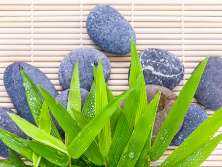 zen like: The Stones spa treatment scene on bamboo background and bamboo leaves with raindrop zen like concepts.