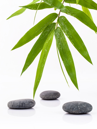 zen like: The  Stones spa treatment scene and bamboo leaves with raindrop zen like concepts. Stock Photo