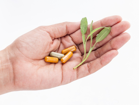 alternative health: Alternative health care fresh herbal and capsule in doctor s hand on  white background. Stock Photo