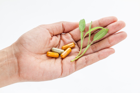 alternative health care: Alternative health care fresh herbal and capsule in doctor s hand on  white background. Stock Photo