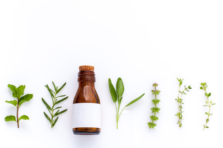 Bottle of essential oil with herb holy basil leaf, rosemary,oregano, sage,basil and mint on white background.