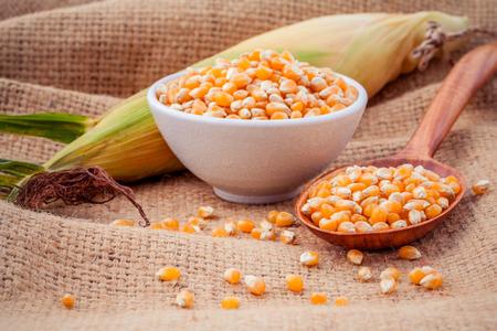 elote: Granos del maíz maduro en el tazón y cuchara con frescos de maíz dulce en sacos de cáñamo fondo.