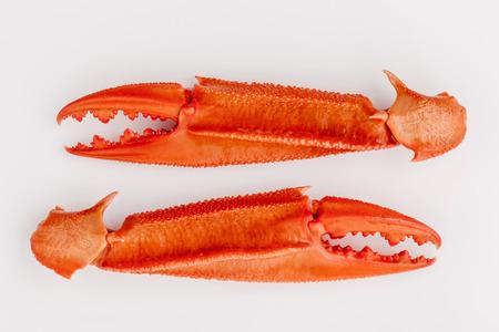 the crab: Pinzas de cangrejo hervidas aislados sobre fondo blanco para cangrejos y men� de mariscos. Foto de archivo