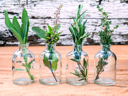 healing plant: Bottle of essential oil with herbs