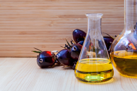 bio diesel: Alternate fuel , bio diesel in laboratory glass and red palm fruits set up on wooden background. Stock Photo