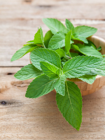 dept: Closeup fresh peppermint  leaves in the wooden bowl on rustic table. Shallow dept of field .