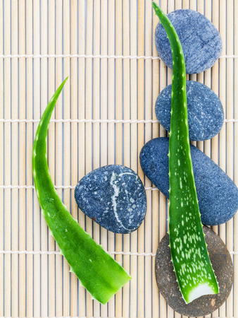 Aloe vera on Stones spa treatment scene natural spas ingredients for skin care in zen like concepts.