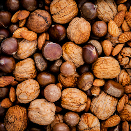 unsaturated: Different kinds of nuts in shells ,cashew, almond, walnut,hazelnuts, pecan and macadamia.
