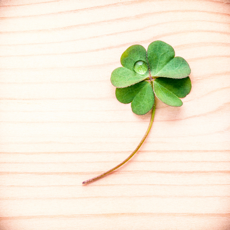 clovers: Toned of clovers leaves on wooden background