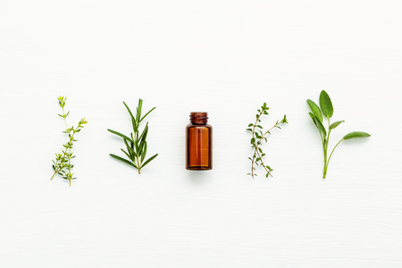 herbalism: Bottle of essential oil with fresh herbal sage, rosemary, lemon thyme and thyme setup with flat lay on white wooden table.