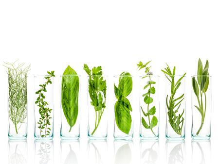 Close Up Flaschen von ätherischen Ölen mit frischen Kräutern. Salbei, Rosmarin, Basilikum Blätter, Zitrone Thymian, Petersilie und Pfefferminze Zweig isoliert auf weißem Hintergrund.